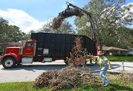 Dumptruck and shredder removing debris